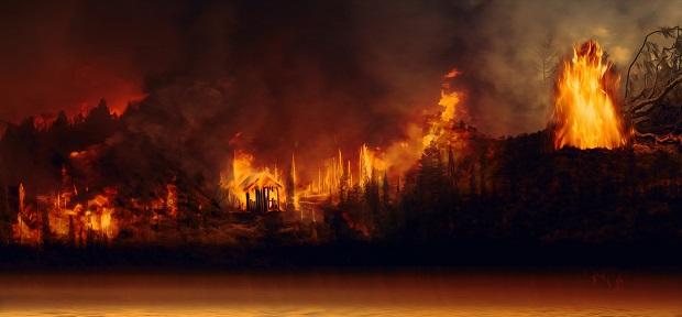 アマゾン火災と企業責任:ザ・ノース・フェイス親会社、ブラジル